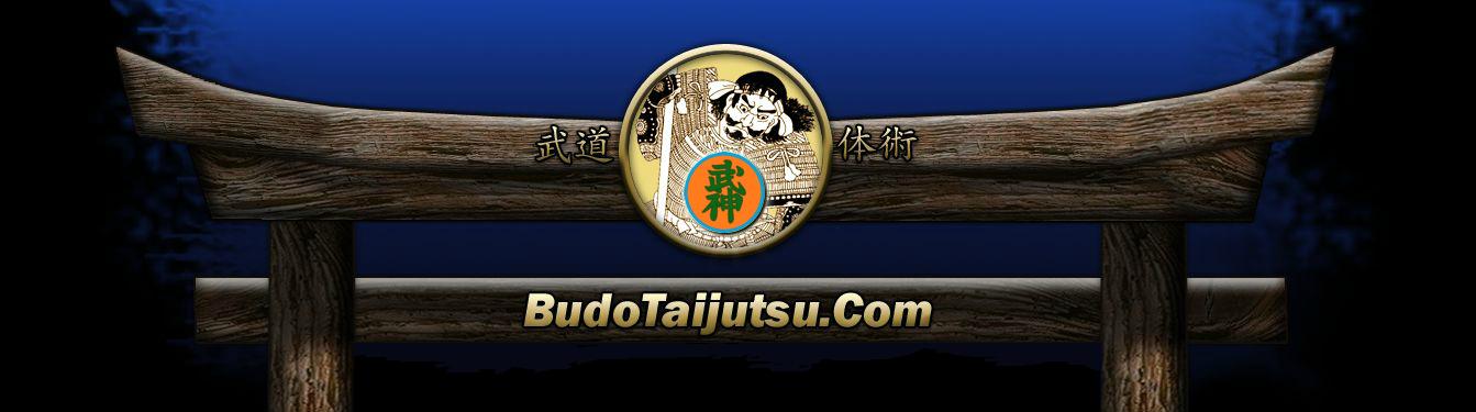 Ninjitsu Home Training Program - Shintai Ryu Martial Arts